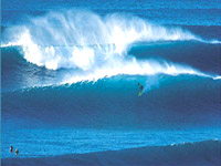 all inclusive guided tours and surf trips to Hawaii